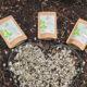 presslinge 3x moringa gesund 4
